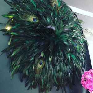 Feather walldecoration
